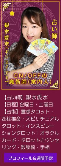 ON/OFFの魔術師(案内人)